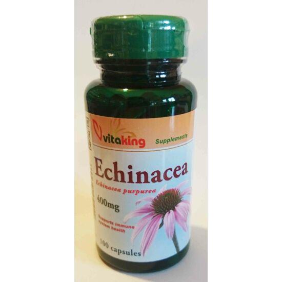Bíbor kasvirág (Echinacea) 100db
